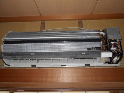 DSCN0982
