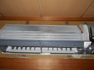 DSCN0985